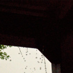 rainydayphotos_0051
