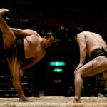 sumo_2010_ericBates_002