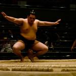 sumo_2010_ericBates_005