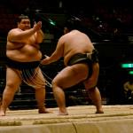 sumo_2010_ericBates_007