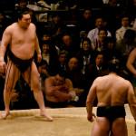 sumo_2010_ericBates_024