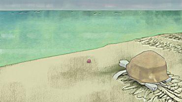 turtleAnimationTest1.jpg